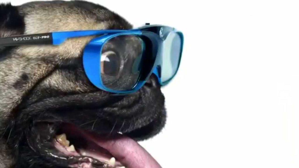 3D Brille Hi-SHOCK HUND